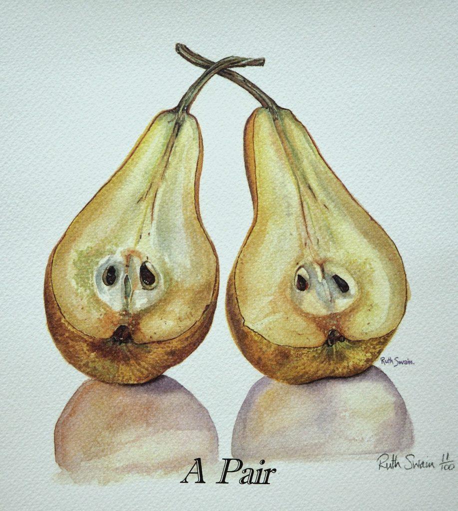 A pair